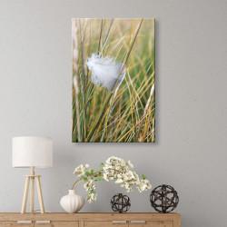 tableau-toile-nature-plume-dans-les-herbes-végétal
