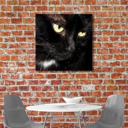 tableau-alu-animaux-portrait-de-chat-noir