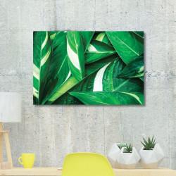 tableau-alu-végétal-feuillage-tropical