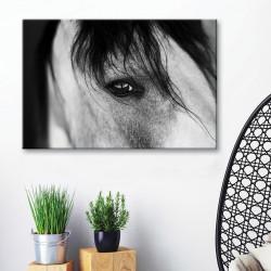 tableau-toile-portrait-cheval-noir-et-blanc