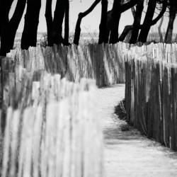 Tableau Déco Way to the Beach Noir et Blanc