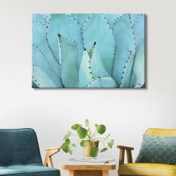 tableau-toile-végétal-agave-cactus