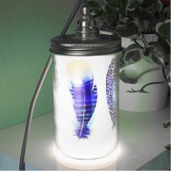 lampe-bocal-plumes-3-visuels-décoratifs