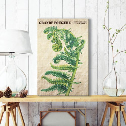 tableau-toile-grande-fougere-botanique