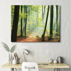 tableau-toile-foret-sud-ouest-brume-matinale